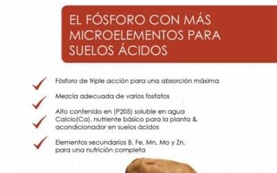 Agrícola : Llega a Chile el nuevo producto Multiphos; fósforo con MÁS microelementos para la acidez de los suelos.