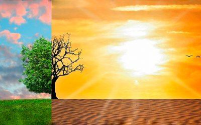 Cambio climático ¿Sabes qué es el Stress Hídrico?