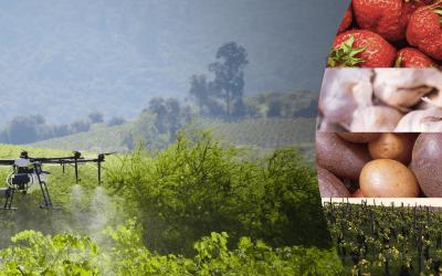 Drones para la agricultura desde la aplicación foliar hasta la detección y el diagnóstico de los cultivos